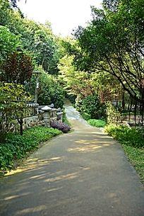 广州越秀公园韩国园园林
