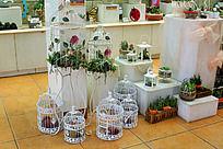 多肉植物展览