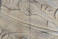 芭蕉叶地板材质贴图