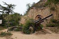 草丛里的大炮