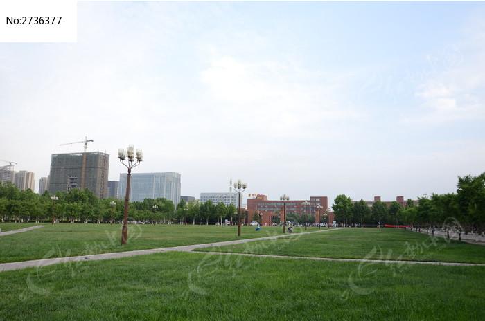 校园草地风景