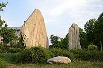 校园景观石
