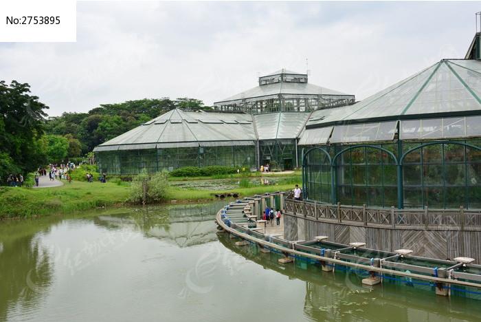 华南植物园的温室