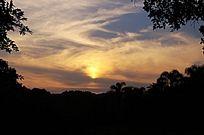 树荫下拍摄夕阳西下