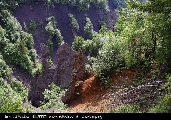 长白山原始森林图片