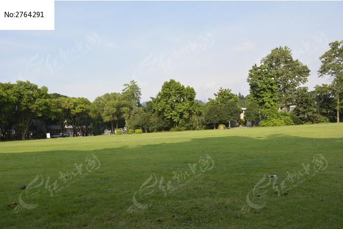 翠绿的树木风光图片_图片_红动手机版