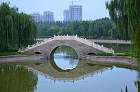 寿光牡丹园里的石桥