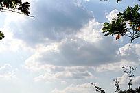 天上的白云背景