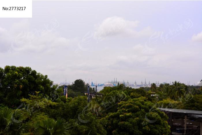 眺望远方的货轮图片,高清大图_森林树林素材