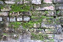 长青苔的农村土墙贴图