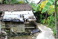 农村小道与破旧的房子