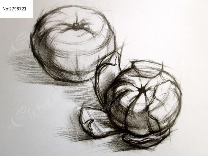 素描橘子结构图