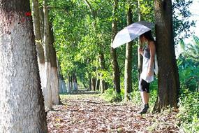 撑着伞背靠树的女生