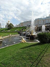 欧洲金色花园
