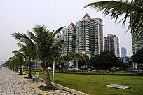 珠海的城市风光