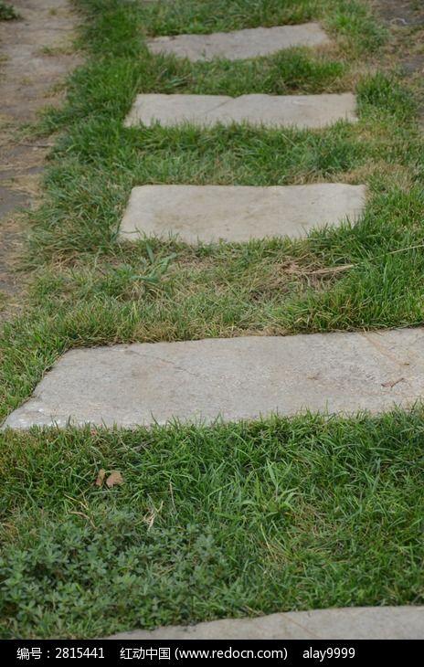 草坪中的石头台阶