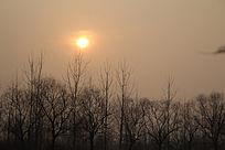 冬季里的夕阳西下