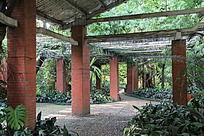 公园花棚里的棚架建筑