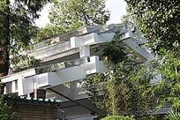 公园里的棚架建筑