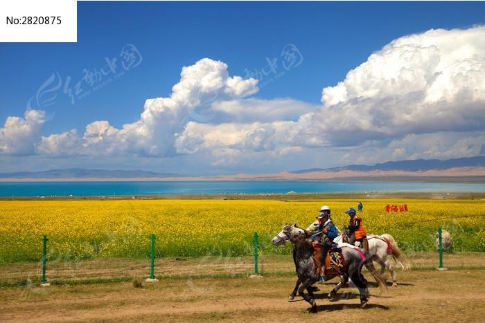 青海湖边赛马图片