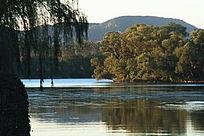 湖中小岛郁郁葱葱倒映在湖面上