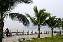 珠海中山公园的美丽景色