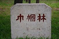 巾帼林石碑