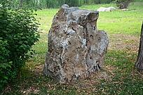 园林中的一块大石头
