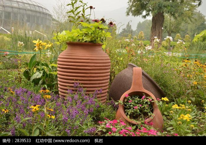 原创摄影图 动物植物 花卉花草 花卉景观