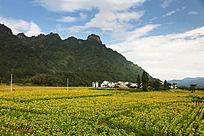 齐云山下的村落