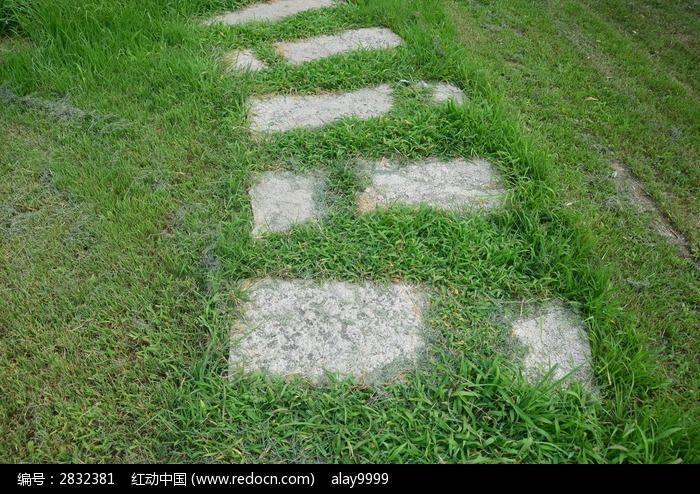 草丛里的石头台阶