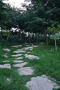寿光农圣公园里草地中的石板路下