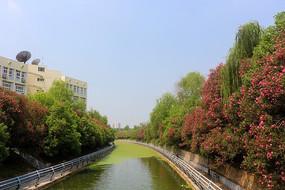 江汉大学校园一角