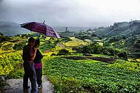 老年夫妇雨中看秋天风景