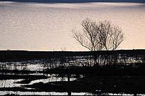 水波粼粼的蟒河风景