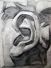 素描石膏耳朵