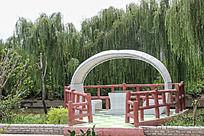 百万葵园中的园林景观