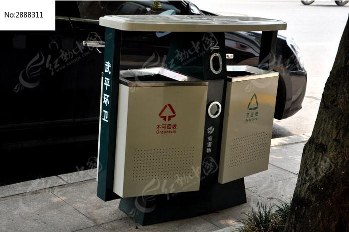 树荫下的分类垃圾桶图片