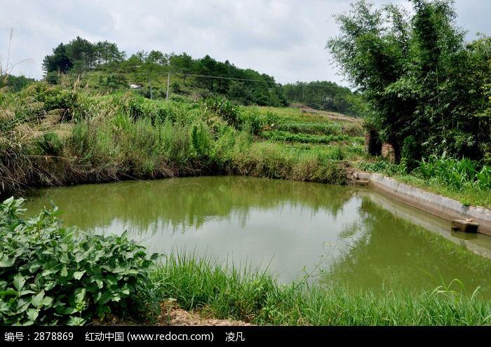 春天池塘ppt背景图片