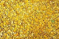 金黄色银杏叶底纹素材