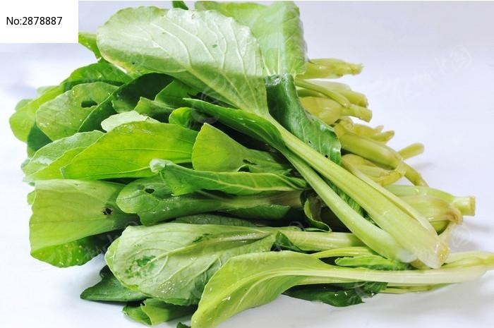 小白菜图片,高清大图_水果蔬菜素材