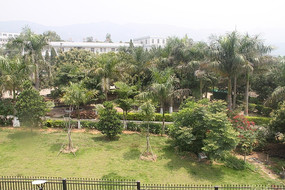 站在别墅的阳台上看花园