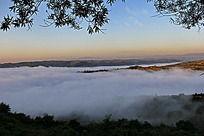 田野上的云海