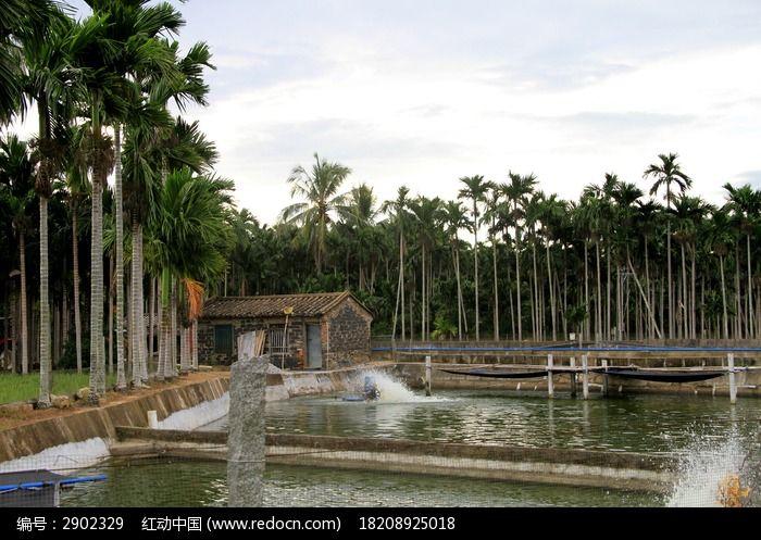 乡村池塘与旁边的小房子图片