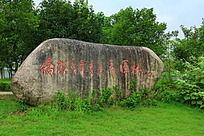 杨府山公园的一块大石头