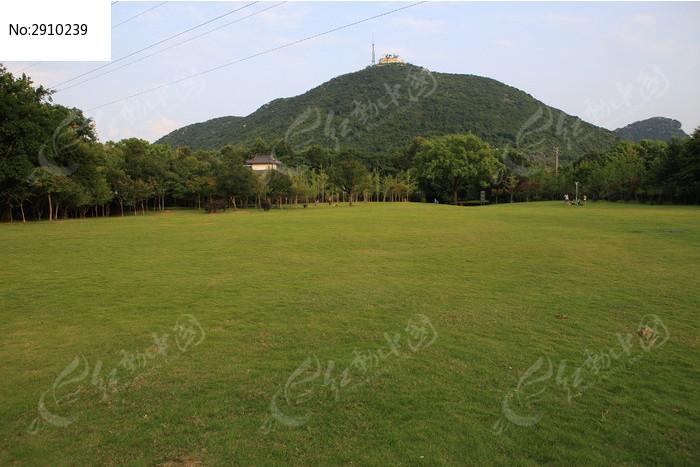 园大�yk��f�ze9��_园林植物园大草坪