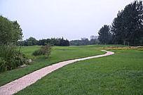 高尔夫球场里的石板路