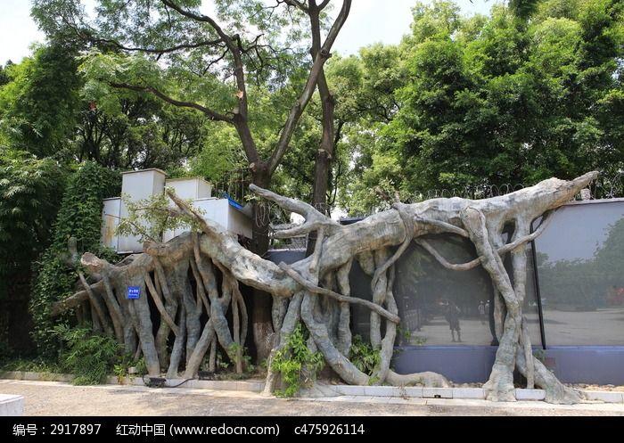 水泥制的树根装饰