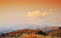 秋天的大山和树林