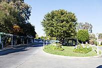 好莱坞  交通道路